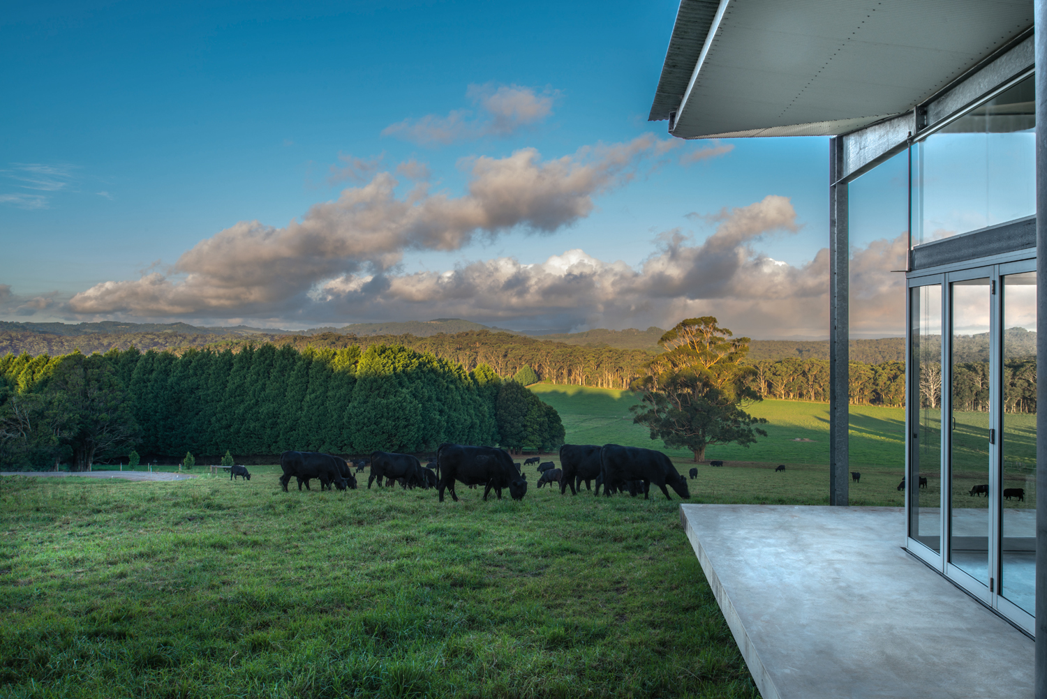 LONGVIEW_VERANDAH_DETAIL_AND_VIEW_photo_Ian_PROVEST_2016_9317.ti