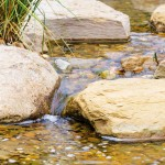 Go with the flow: an outdoor sanctuary
