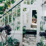 Backyard: Install a greenhouse, grow all year round