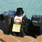The Waterco pool pump range