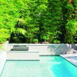 Screening plants: creating your outdoor sanctuary