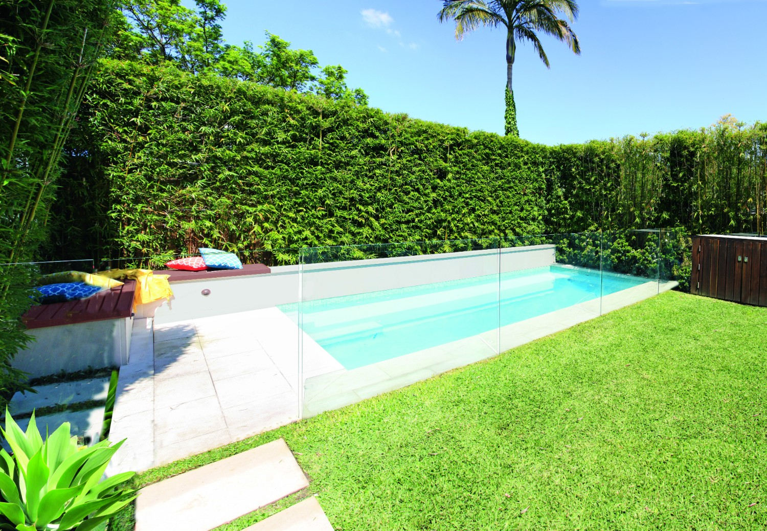 Screening plants: creating your outdoor sanctuary - pool design with glass fencing on one side and screening plants on the other