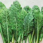 All Hail Kale: Good Organic Gardening