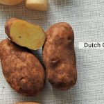 """Hot Potato"": your complete growing guide"