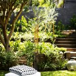 Strong lines, soft planting: an ultra-modern garden project