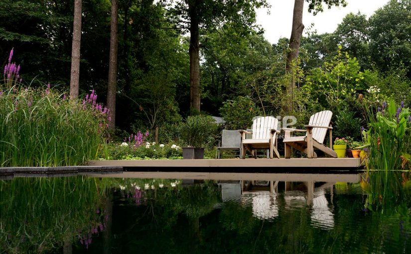 """The best private swimming pond of 2016"": ecological design"