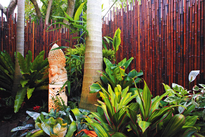 Bamboo Screens: enhance your privacy