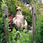 Urban abundance: the finest suburban permaculture