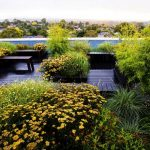 Sky's the limit: an incredible rooftop garden