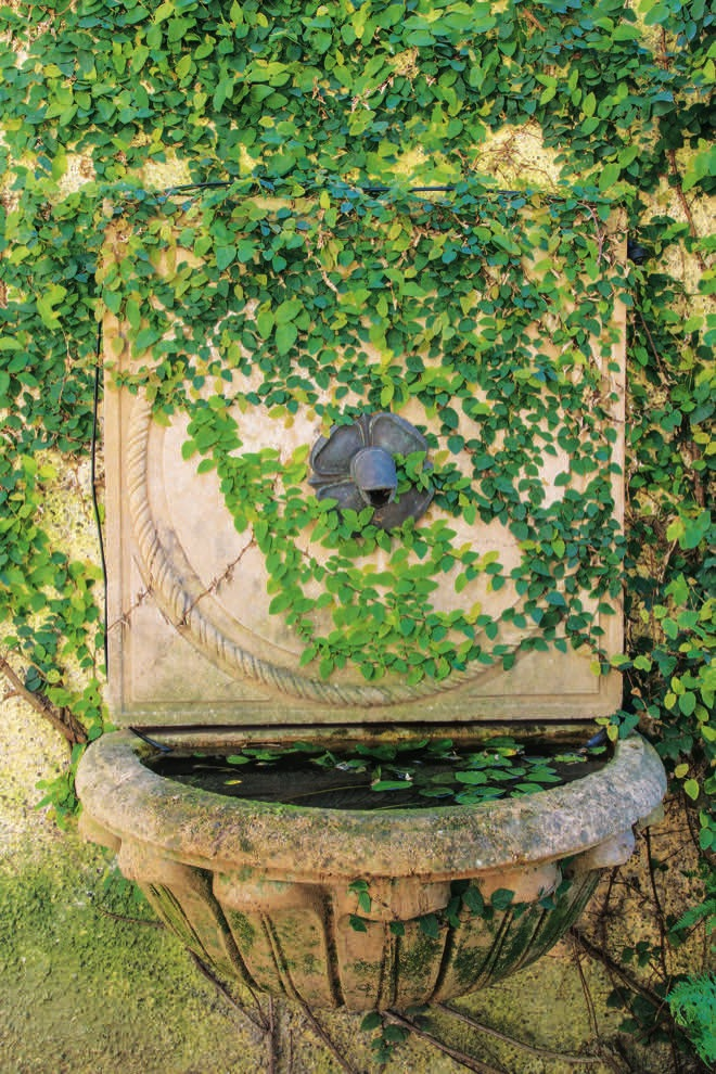 Restoring Rahiri: a communal garden project