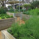 Organic hospitality: a boutique retreat garden
