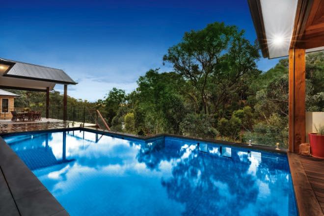 Treetop tranquility: a lush native Australian pool