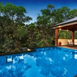 Treetop tranquility: a lush native Australian pool