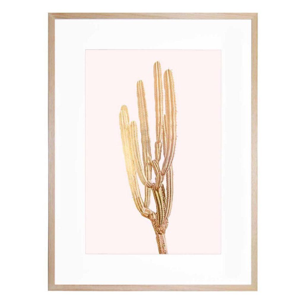 Golden Cactus