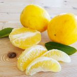 Lemons 101: Recipes, Varieties and How to Grow Them