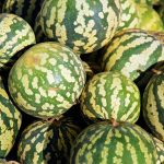 All About Jam Melons