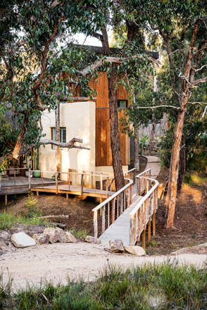 A rustic garden with a beach-bush getaway feel