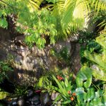 A luxuriant, resort-style garden with lagoons and a waterfall feature