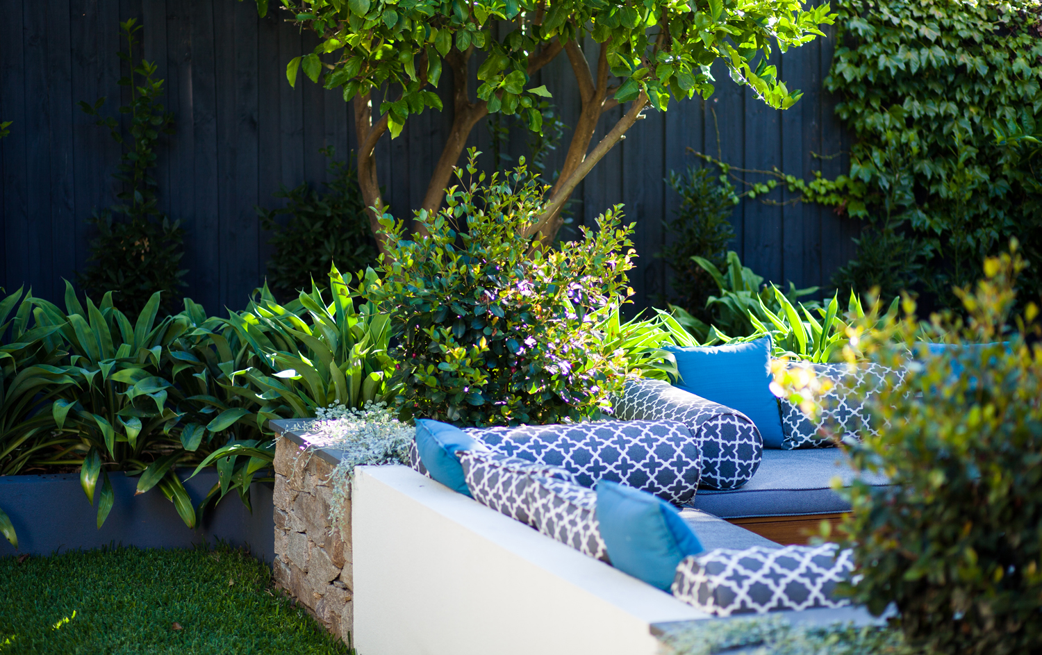 This inner-city Melbourne garden has a new lease on life