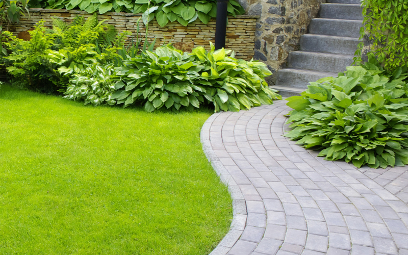 How turf can transform your yard, house value and wellbeing
