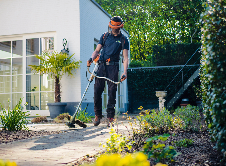 12 simple tasks for a regular garden maintenance routine
