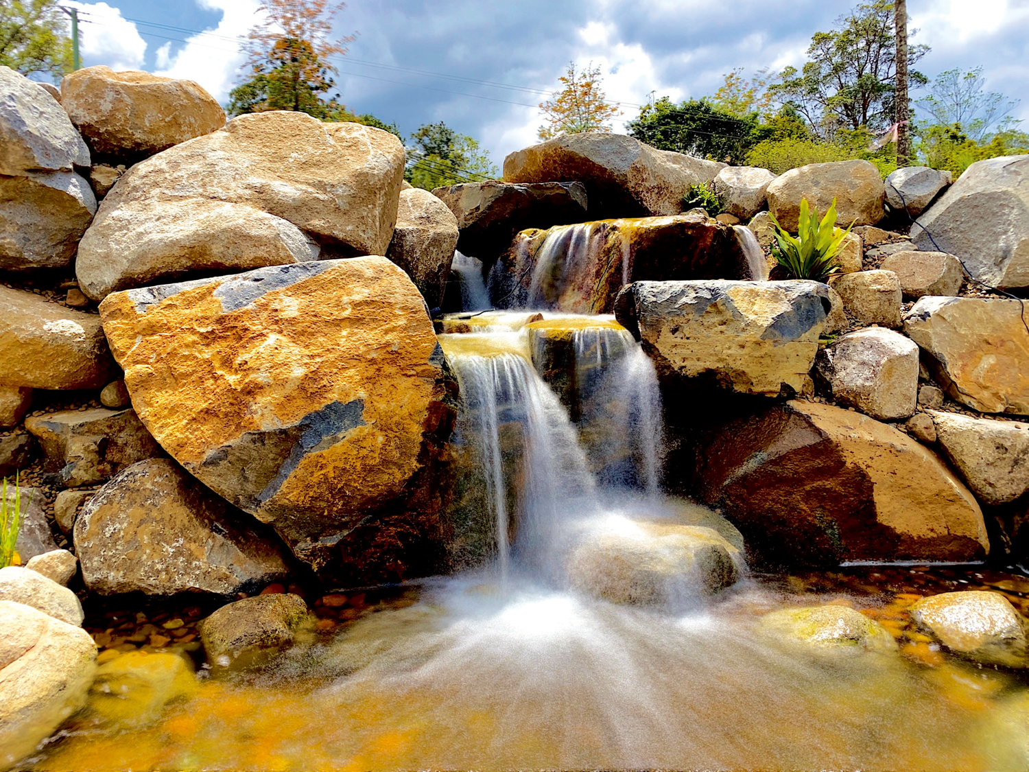 How to recreate a natural water feature in your garden