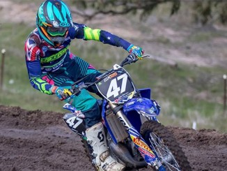Junior Mx