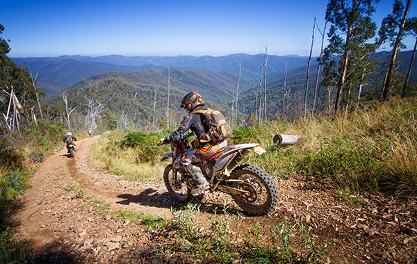 Trail Tip