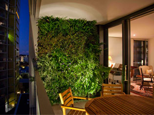 Green Walls - The new trend in apartment living - Project | ODS
