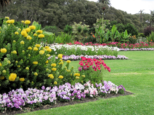 ground-breaking new horticultural event announced
