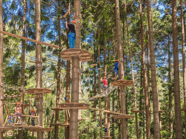 Treetop Adventures Project Ods