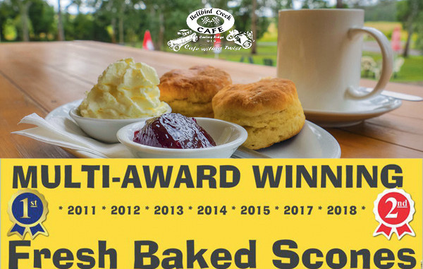 Bellbird Cafe - Riding and Cafe with a Twist
