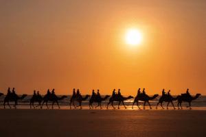 An Indian ocean sunset