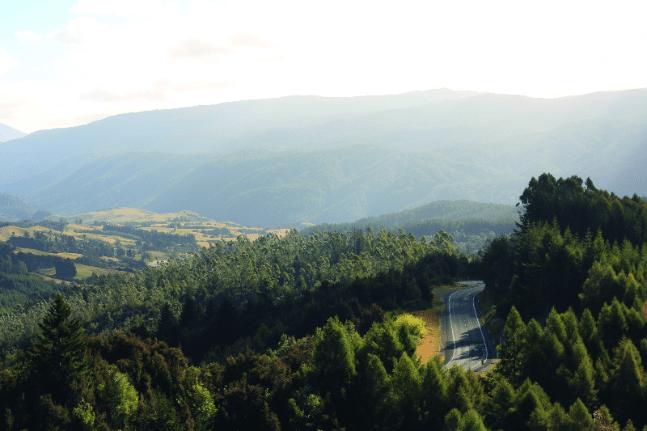 Driving near Marlborough