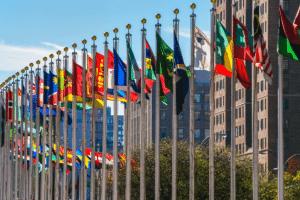 UN development goals