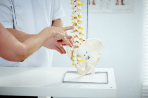 Osteotherapy, physiotherapy and chiropractic