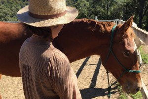 What is equine assisted therapy or EAT?
