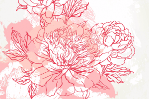 flower illustration floral wellbeing art