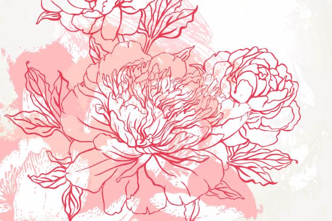 flower illustration floral wellbeing art