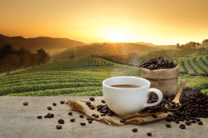 coffee, nature, environment, beans, coffee beans, health, habit