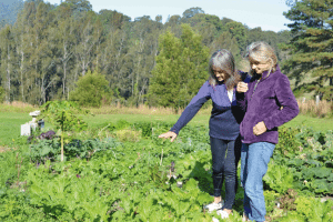 Eve and Judy in the organic garden