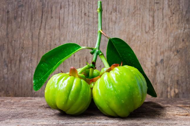 garcinia atroviridis fresh fruit weight loss