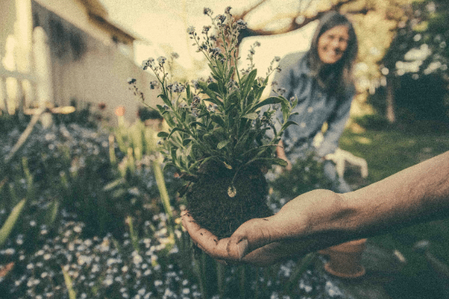 garden heart, happy woman soil dirt life