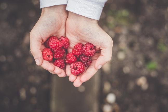 Raspberries fruit berries beauty food skin