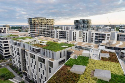 green roof on modern buildings
