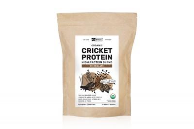 Cricket Protein Chocolate