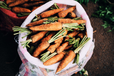 What on Earth should you eat? Zero-waste expert Alexx Stuart shares all