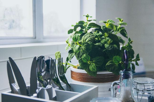 sustainable kitchen hacks