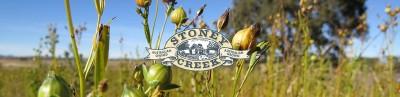 Stoney Creek Long Profile