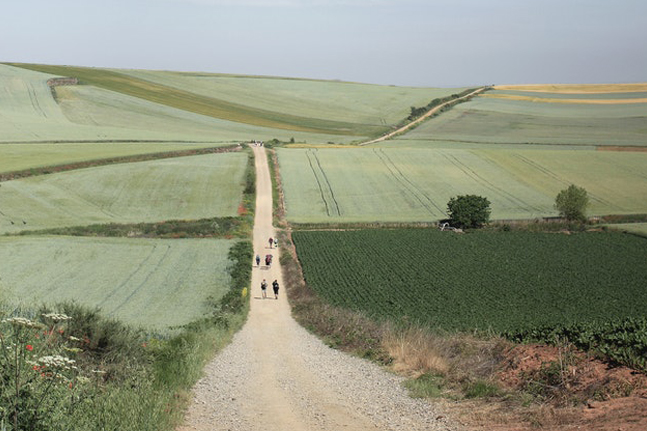 Life lessons learnt from walking the 800km Camino de Santiago